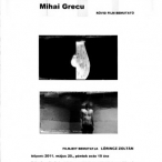 Grecu_Mihai_10