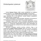 nyilatkozat_koteless